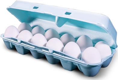 egg_carton_smaller